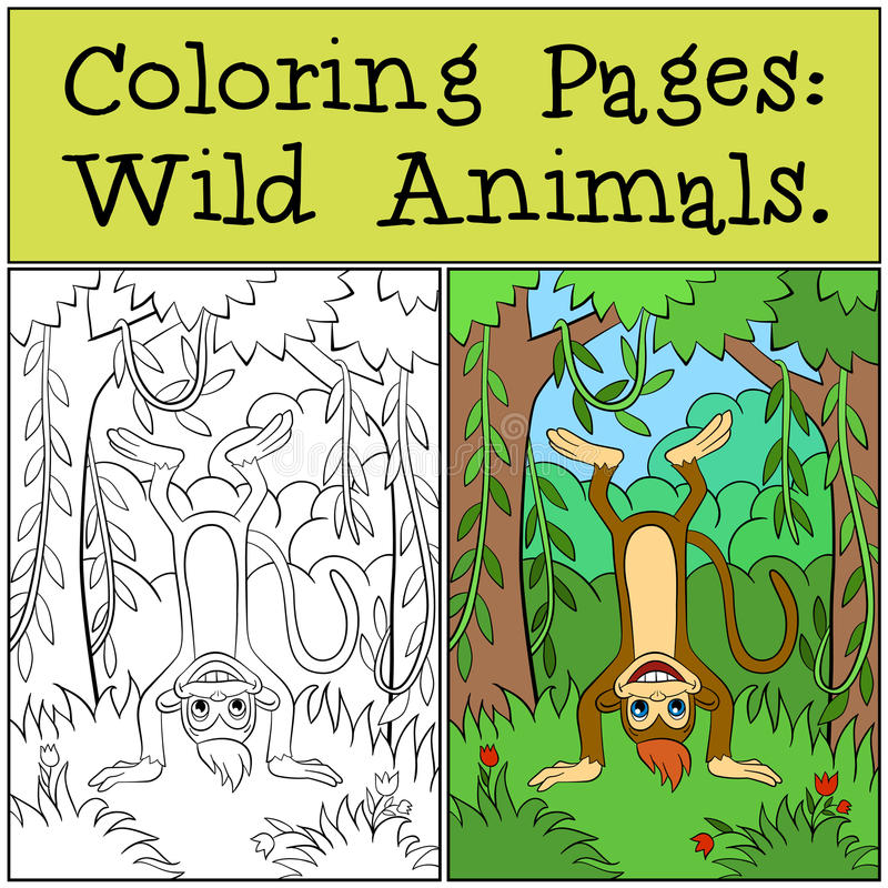 Pages de coloration : Animaux sauvages Petit singe mignon illustration stock