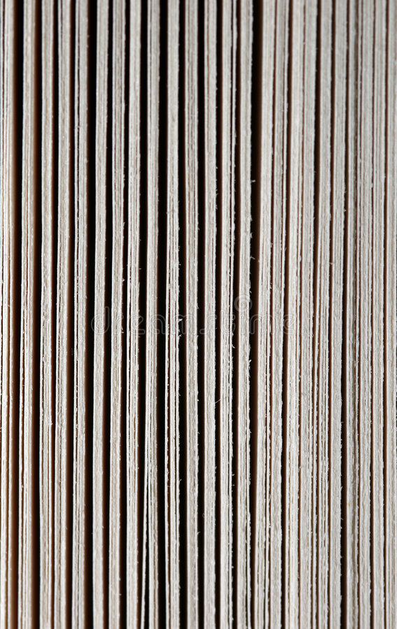 Download Pages front stock photo. Image of papyrus, many, learn - 115874
