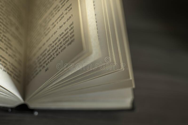 Pages Of Open Novel Free Public Domain Cc0 Image