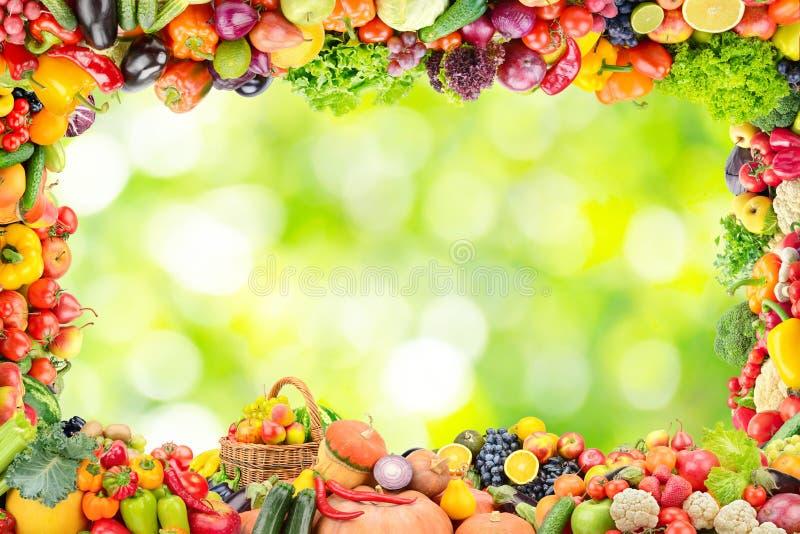 Pagina della frutta e delle verdure sul backgrou confuso astratto della pianta fotografie stock libere da diritti