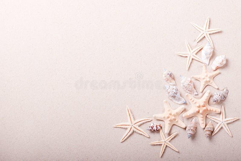 Pagina delle conchiglie sulla sabbia fotografia stock libera da diritti