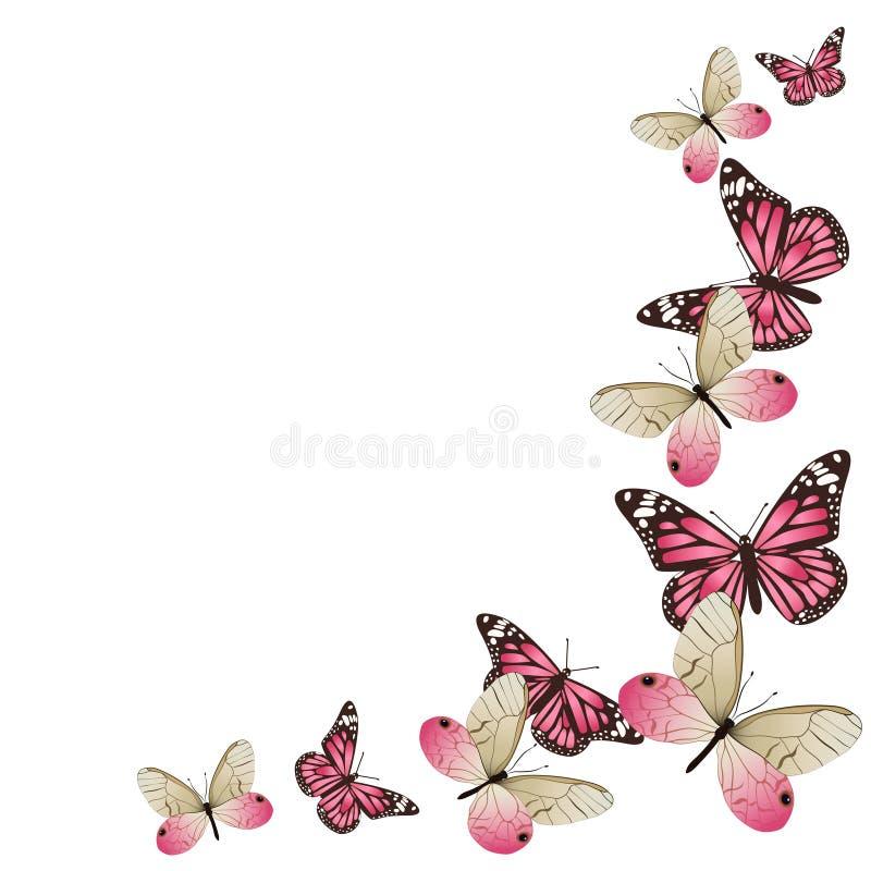 Pagina delle farfalle rosa in volo Isolato su priorit? bassa bianca Grafici di vettore royalty illustrazione gratis