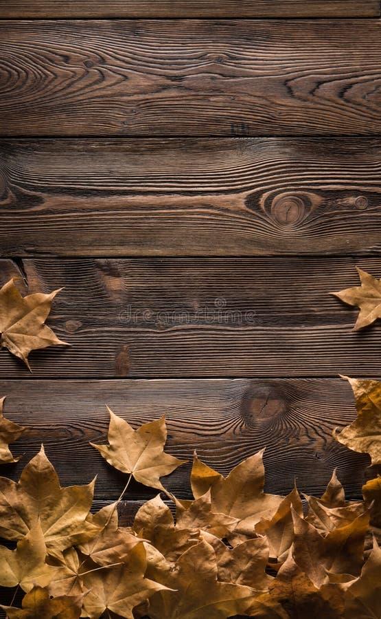 Pagina delle foglie di autunno sui bordi di legno immagini stock