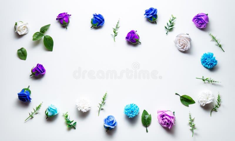 Pagina delle teste delle rose differenti: blu, rosa, porpora Disposizione con lo spazio della copia fotografia stock