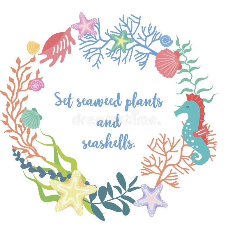 Pagina di alga, di corallo e delle coperture illustrazione di stock