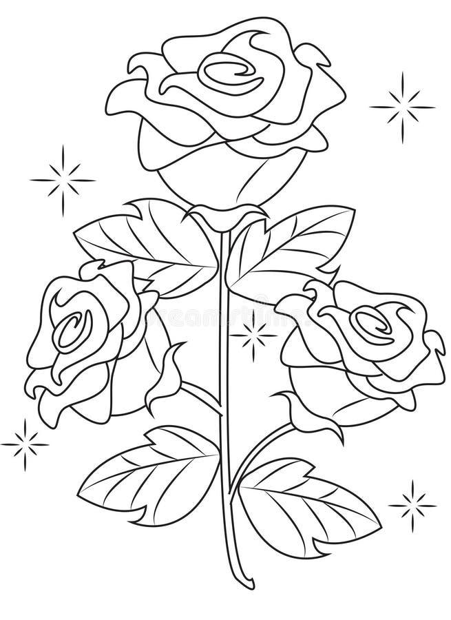 Pagina di coloritura di Rosa illustrazione di stock