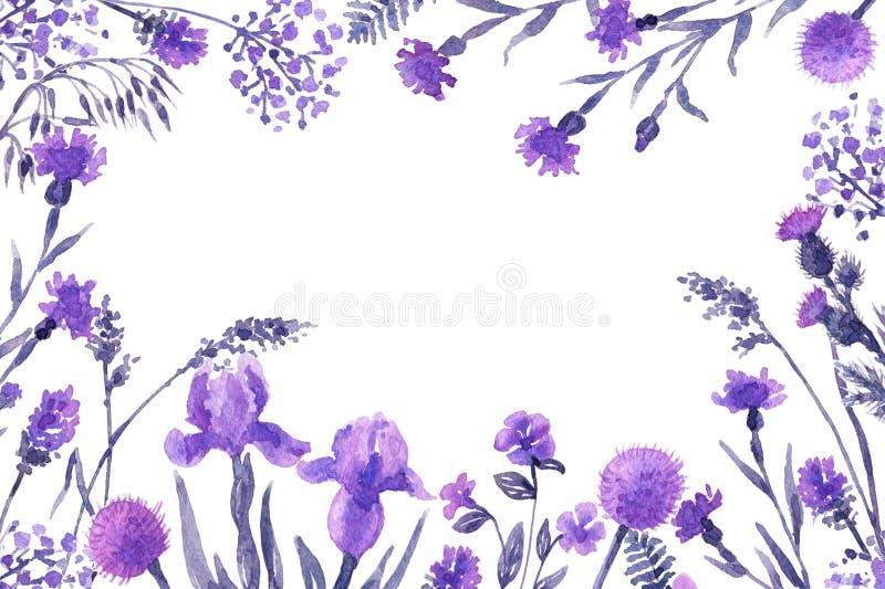 Pagina floreale con i wildflowers lilla illustrazione di stock