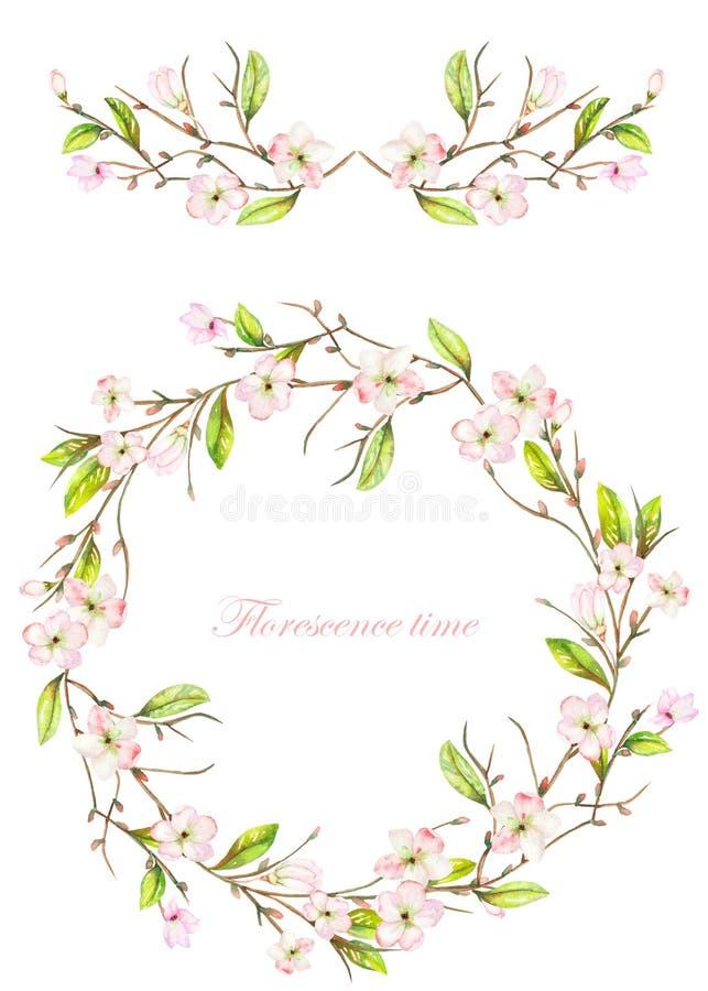 Pagina il confine, la ghirlanda e la corona dei fiori di fioritura e dei rami di rosa tenero con le foglie verdi dipinte in un ac royalty illustrazione gratis
