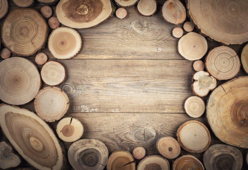 Pagina la sezione trasversale del tronco di albero che mostra gli anelli di crescita immagini stock