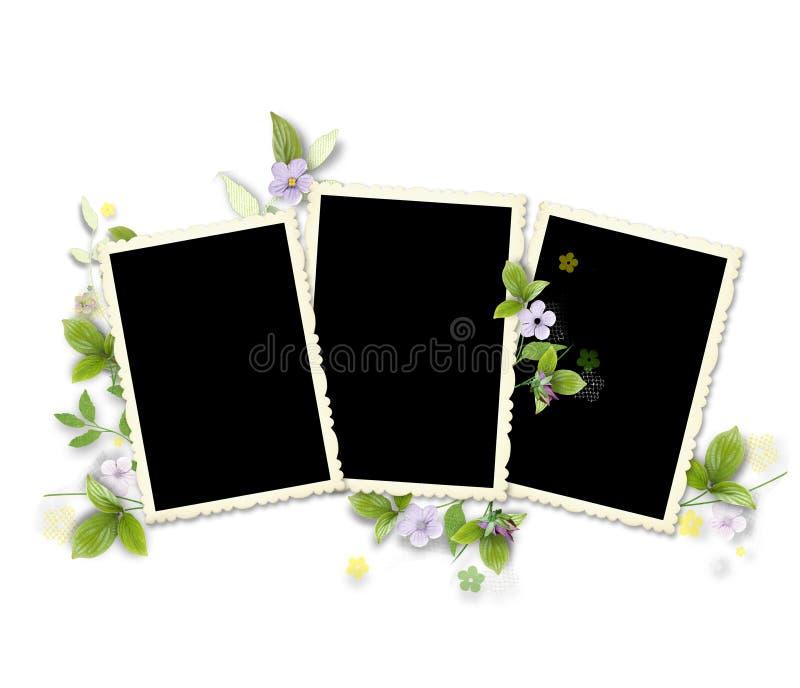Pagina per tre foto con i fiori artificiali fotografia stock libera da diritti