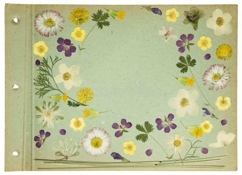 Pagina van oud fotoalbum, scrapbooking element royalty-vrije stock fotografie