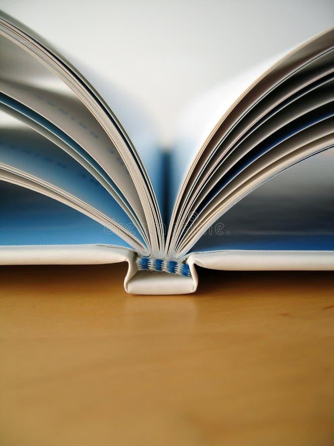 Paginaciones del libro foto de archivo libre de regalías
