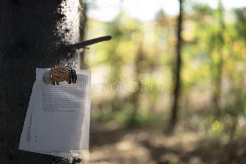Pagine conficcate pugnale su un albero immagini stock libere da diritti