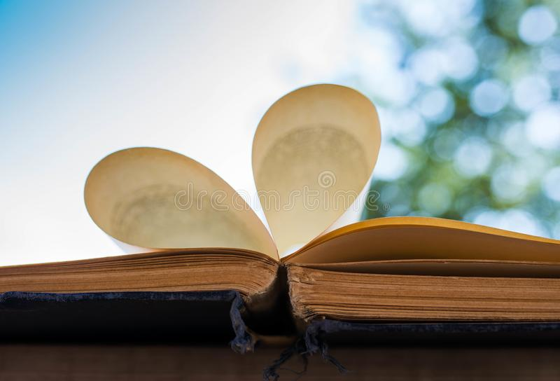 Pagine del libro aperto, vecchio, invecchiato, giallo che formano un'aria aperta del cuore fotografia stock