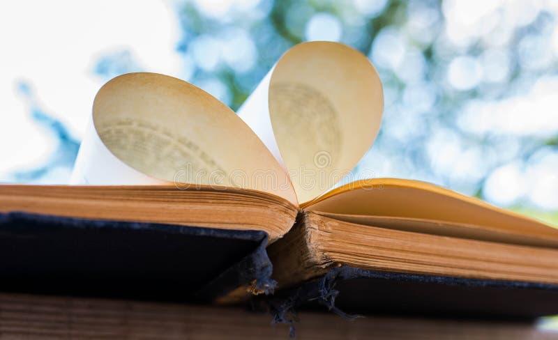Pagine del libro aperto, vecchio, invecchiato, giallo che formano un'aria aperta del cuore fotografia stock libera da diritti