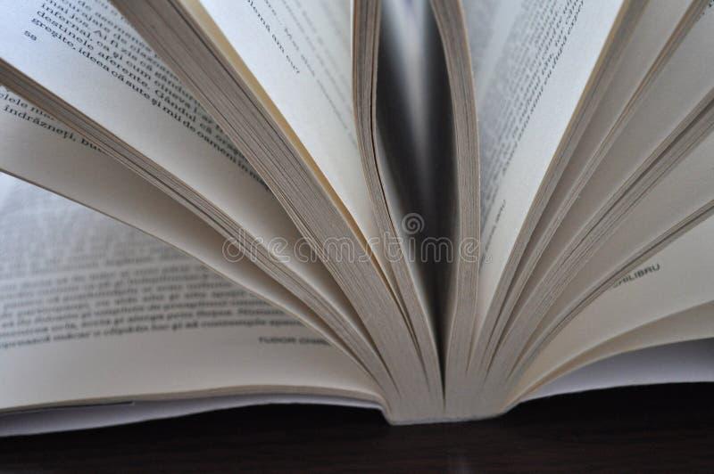 Pagine del primo piano di un libro aperto fotografia stock libera da diritti