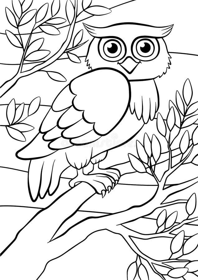 Pagine di coloritura uccelli Gufo sveglio illustrazione di stock