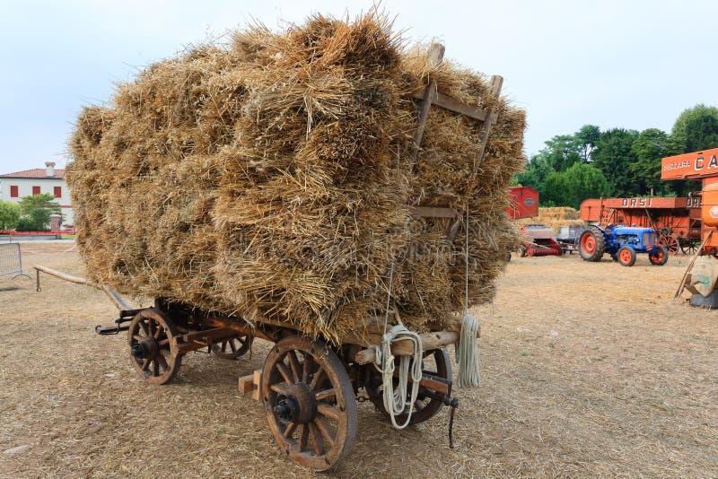 Download Paglia del vagone fotografia stock. Immagine di grano - 56885700
