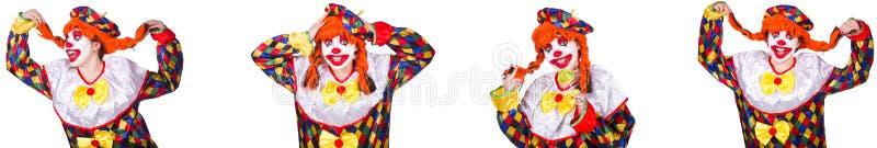 Pagliaccio maschio divertente isolato su bianco fotografia stock