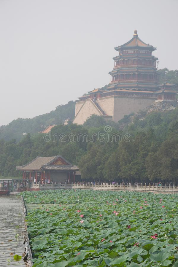 Pagod- och lotusblommablommor i Pekingsommarslotten, Kina royaltyfri foto