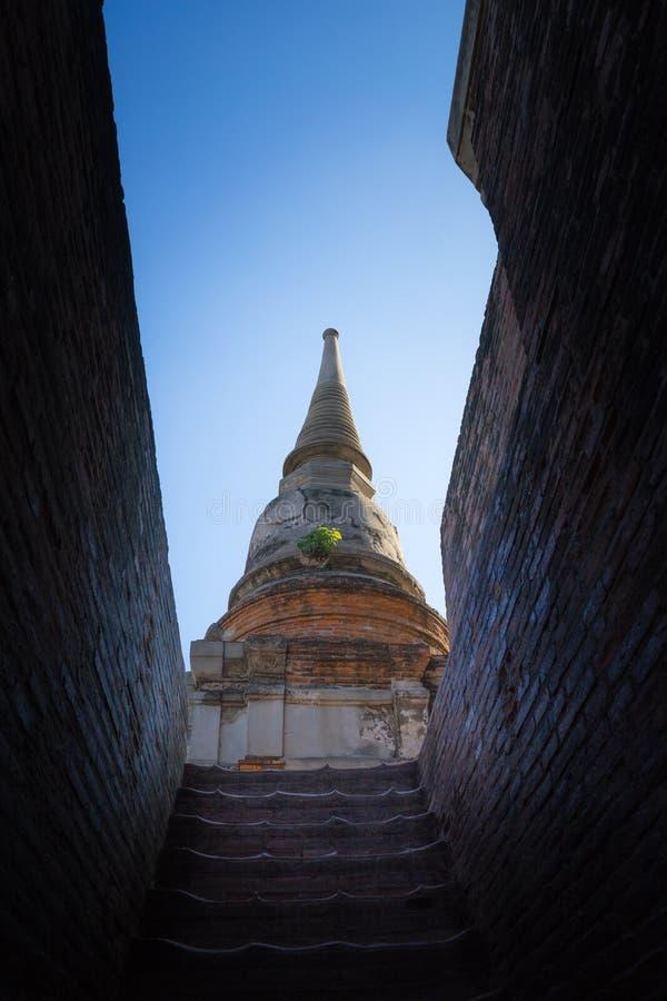 Pagoda énorme photo libre de droits