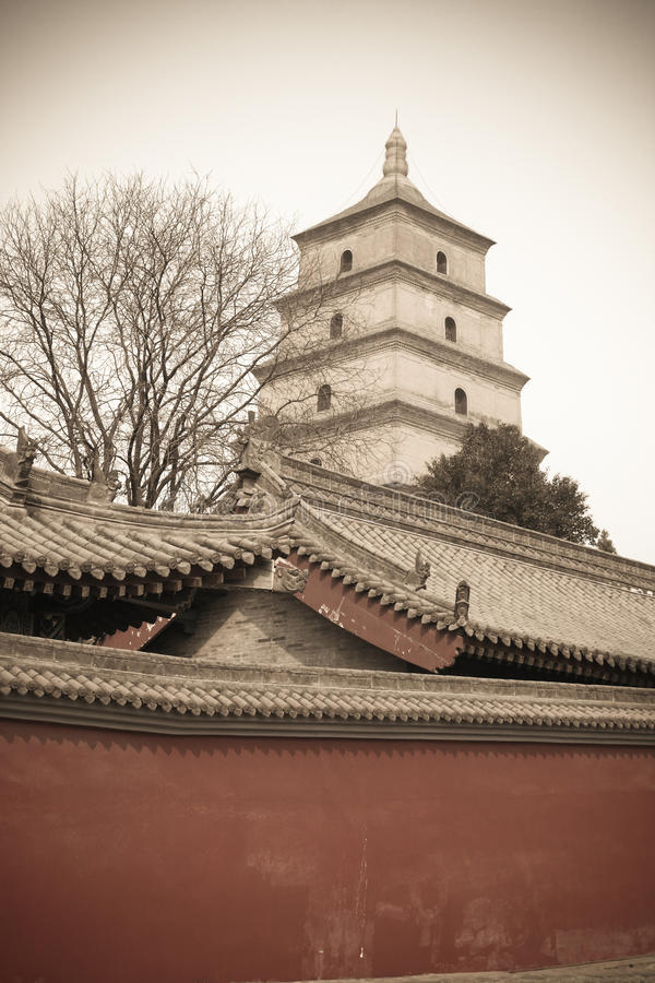 Pagoda гусыни Xi'an большой одичалый стоковые изображения rf