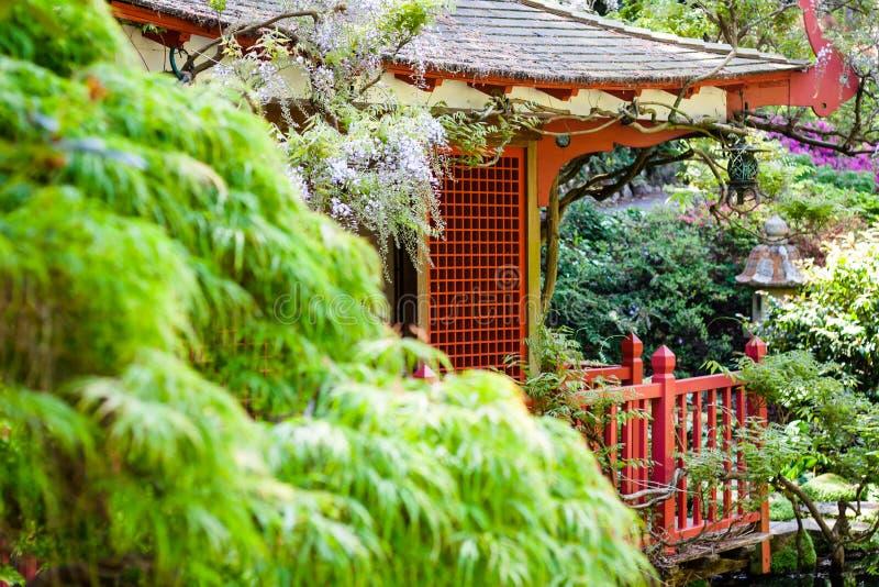 Download Pagoda zdjęcie stock. Obraz złożonej z kwiat, ogród, płatki - 41954306