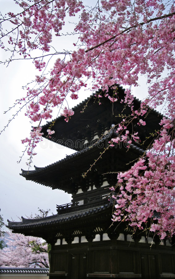Download Pagoda stock photo. Image of serenity, japanese, sacred - 4638318