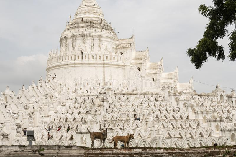 Pagoda blanca de Hsinbyume Paya, Mingun myanmar imágenes de archivo libres de regalías