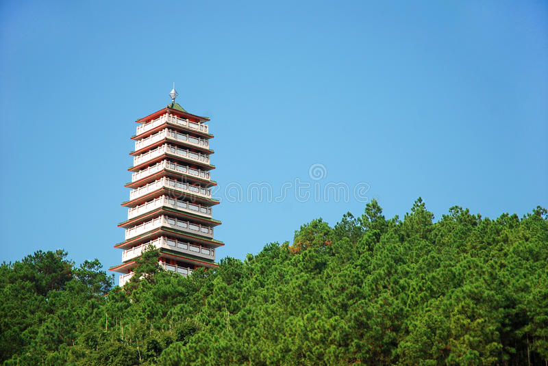 Download Pagoda and blue sky stock photo. Image of pine, asia - 21993916