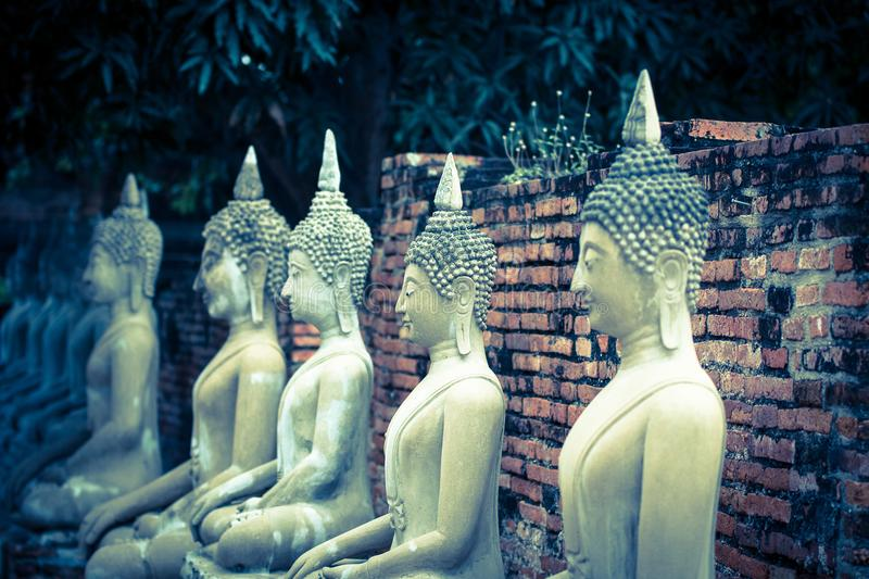 The Pagoda and Buddha Status at Wat Yai Chaimongkol, Ayutthaya,. Aligned Sitting Buddha Statues and Buddha Status at Wat Yai Chaimongkol, Ayutthaya, Thailand royalty free stock photo