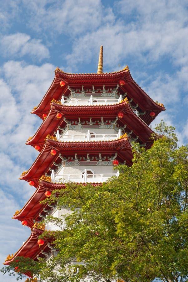 Pagoda dans le jardin chinois photo stock