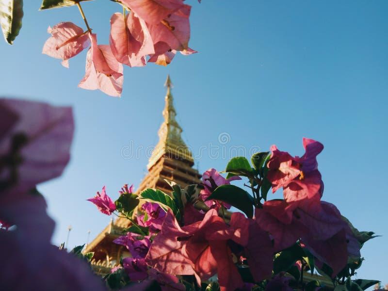 pagoda de plancher d'พ9th photo stock
