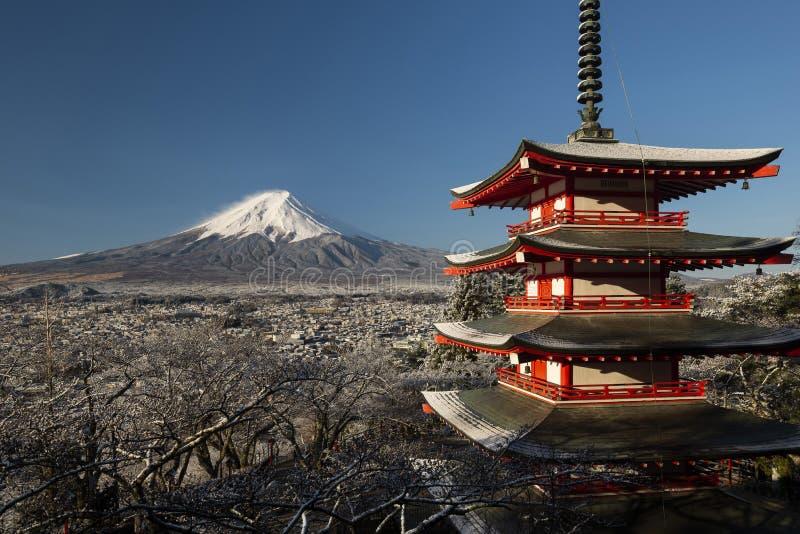 Pagoda ed il monte Fuji di Chureito Fuji di mattina dopo neve, Giappone immagine stock