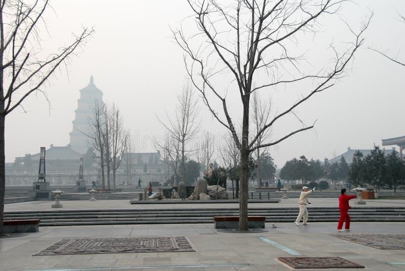 Pagoda géante et personnes sauvages d'oie jouant le chi de Tai chuan, pendant le matin, XI `, Chine images stock