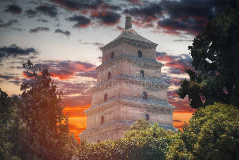 Pagoda grande de gansos salvajes foto de archivo