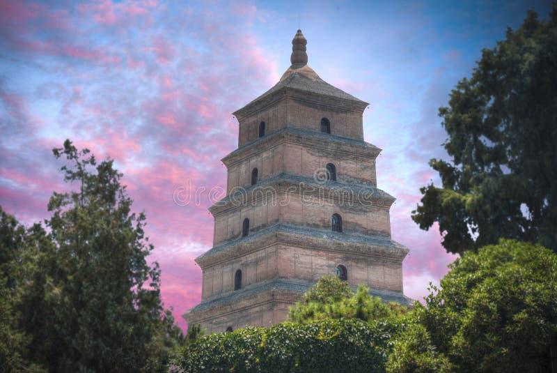Pagoda grande de gansos salvajes imagenes de archivo