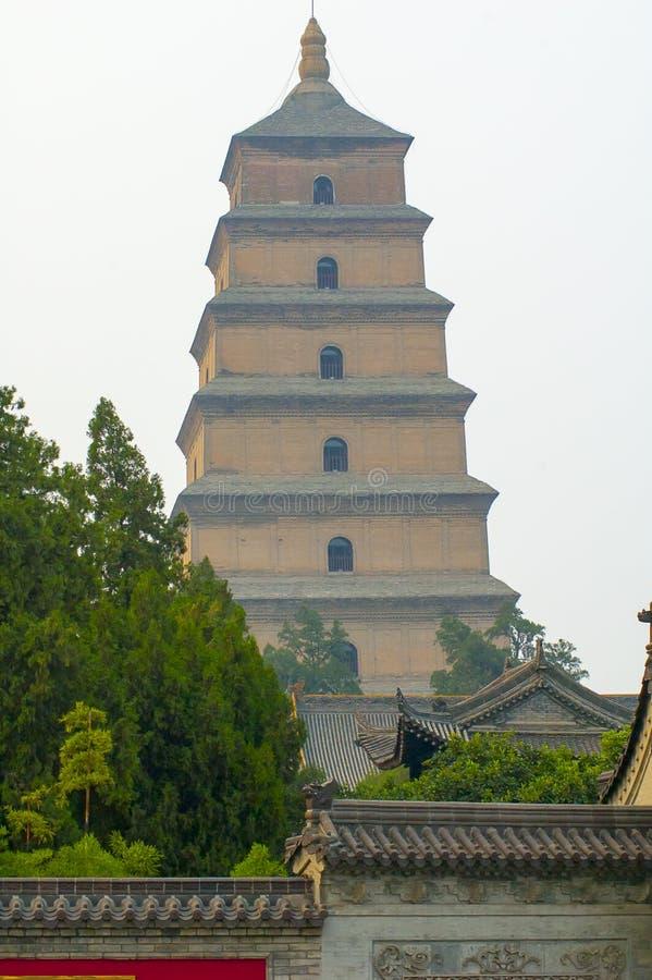 Download Pagoda Grande Del Ganso De Wiled Foto de archivo - Imagen de antiguo, grande: 44856774