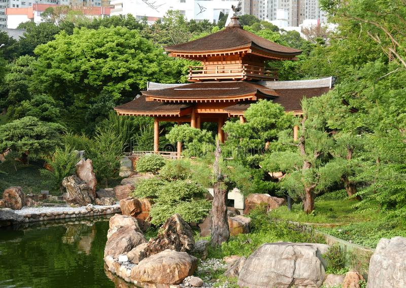 Pagoda i Bonsai ogród w Chi Lin Nunnery w Hong Kong zdjęcie stock