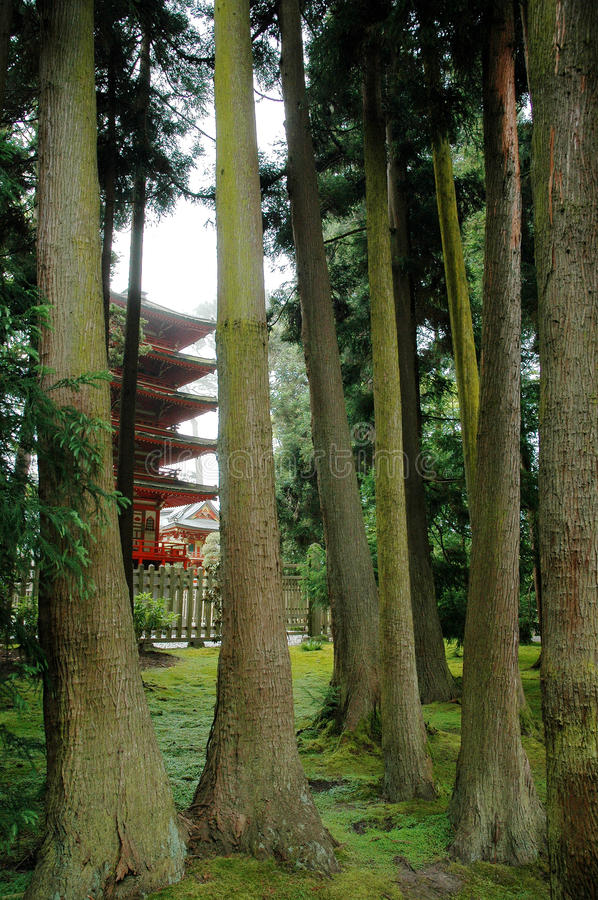 Pagoda in Japanese Tea Garden royalty free stock images