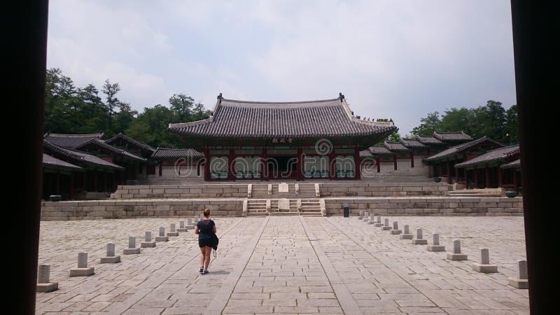pagoda fotografia royalty free