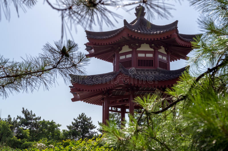 Pagoda sauvage géante d'oie photographie stock