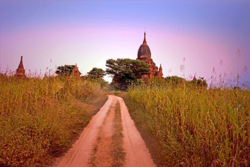 Pagodas antiguas en el campo de Bagan en Myanmar fotos de archivo