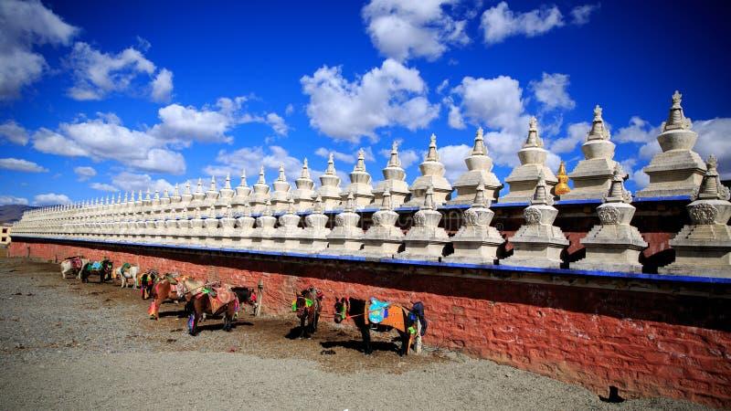 Pagodas de blanc du Thibet photos stock