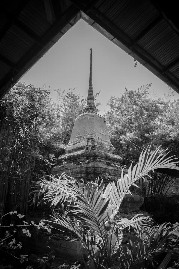 Pagode arruinado velho do stupa no templo budista tailandês fotografia de stock