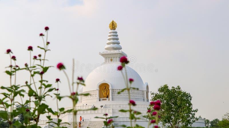 Pagode da paz de mundo em Lumbini, Nepal fotos de stock royalty free