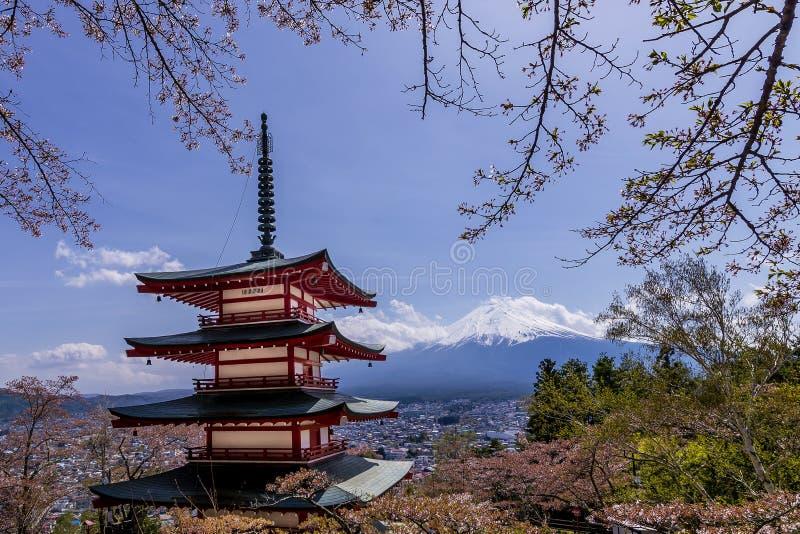 Pagode de Chureito, Fujiyoshida, uma das vistas as mais famosas de Monte Fuji e de Japão com as flores de cerejeira conhecidas co imagem de stock