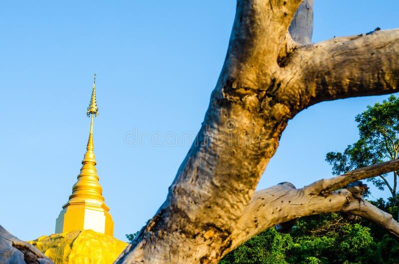 Pagode de Phadan na rocha mountian, dourada, Sakonnakorn Tailândia imagem de stock