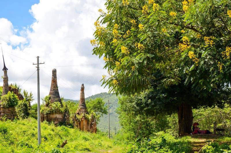 Pagode de Shwe Indein no lago Inle, Shan State, Myanmar imagens de stock