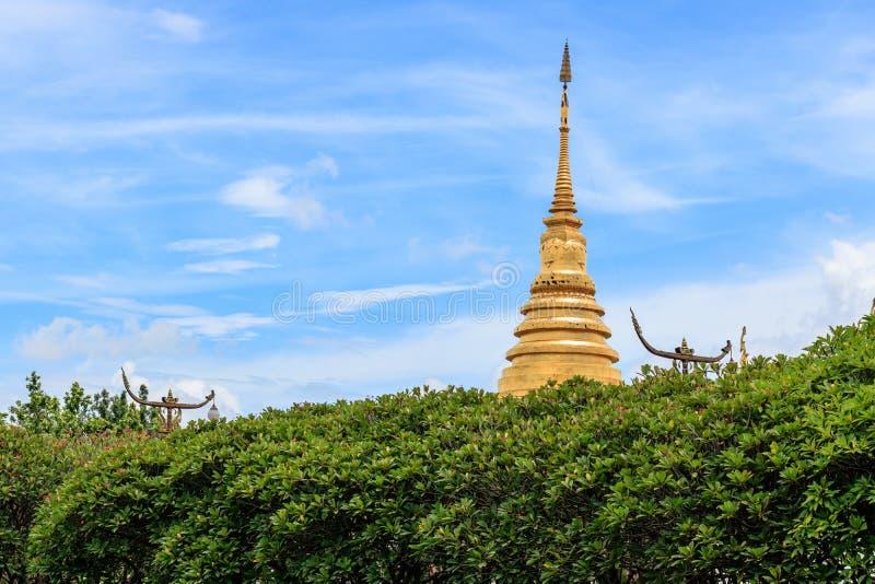 Pagode dourado com árvore e o céu azul, Wat Phra Thad Chang Kham, fotos de stock